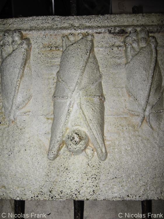 13 Bats